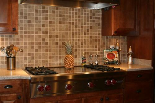 Staron Solid Surface-Countertop